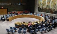 联合国安理会就戈兰高地问题举行紧急会议
