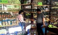 帮助越南企业在南非推介产品