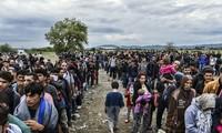 ไอเอ็มเอฟเรียกร้องอียูเปิดตลาดแรงงานให้แก่ผู้ลี้ภัย