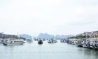 Во многих провинциях Вьетнама выросло число туристов во время праздника независимости страны