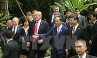 Индонезийские СМИ высоко оценивают новую позицию Вьетнама после саммита АТЭС 2017