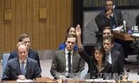 Реакция мирового сообщества на наложение вето США на резолюцию СБ ООН относительно Иерусалиму