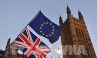 Суд Европейского союза назначил время разбирательства дела о брексите