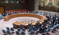 Совет Безопасности ООН снял санкции с Эритреи