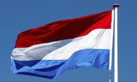 Город Хошимин и Нидерланды активизируют сотрудничество