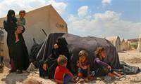 Германия призвала комиссию ООН по миростроительству принимать участие в урегулировании конфликтов в мире