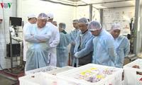Предприятия Вьетнама и Смоленской области устанавливают бизнес-связи