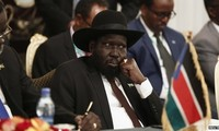 South Sudan government and rebels agree to form a transitional government