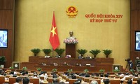 NA deputies discuss revised draft Law on Denunciation