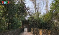 Bo Da Pagoda - special national relic site