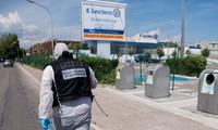 France arrests 10 radical suspects planning anti-Muslim attacks