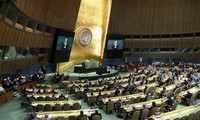Vietnam participates in UN General Assembly meetings