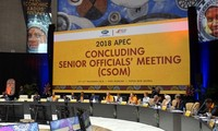CSOM prepares for APEC Economic Leaders' Meeting 2018