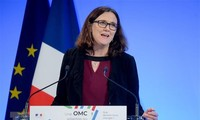 EU urges US to join talks on WTO reform