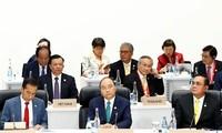 Deputy FM: Vietnam contributes to addressing urgent global issues
