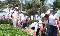 Da Nang City responds to Vietnam's Sea and Islands Week