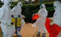 WHO drafts strategies to deal with Ebola epidemic