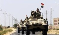 Egypt army kills 17 militants in Sinai security campaign