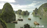 Workshop on promoting Ha Long Bay's values held
