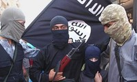 IS has killed more than 11,600 civilians and carried out 165 executions in Iraq