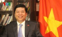 New website of Vietnamese embassy in Japan launched