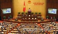 National Assembly hears report on draft Law on Property Auction