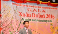 Vietnamese community in UAE establishes Community Liaison Committee