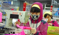 TPP may help Vietnam sew up clothing exports
