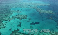 China destroys reefs to build artificial islands in the East Sea