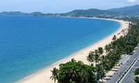 Young Vietnamese expats clean up beach in Quang Ngai