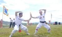 Liên hoan Quốc tế võ cổ truyền Việt Nam lần thứ 5-2014 để lại ấn tượng với bạn bè quốc tế