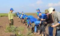 Việt Nam chủ động cùng cộng đồng quốc tế ứng phó với biến đổi khí hậu