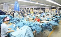 Việt Nam tiếp tục duy trì và phát huy quan hệ hợp tác hiệu quả với ILO