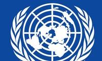 Việt Nam tiếp tục đóng góp hiệu quả vào Liên hợp quốc