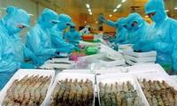 Việt Nam và Hoa Kỳ ký thỏa thuận về chống bán phá giá tôm