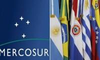 Mercosur tăng cường trao đổi thương mại và đầu tư với Việt Nam