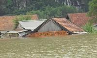 Tình người trong mưa lũ ở Quảng Bình