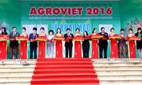Tăng cường quảng bá nông sản an toàn Việt Nam ra thế giới