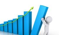 Thương mại Việt Nam - Ấn Độ tăng mạnh 43%