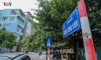 Tuyến phố đi bộ Trịnh Công Sơn