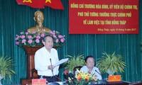 Phó Thủ tướng Thường trực Chính phủ Trương Hòa Bình làm việc tại tỉnh Đồng Tháp
