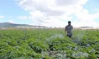 Doanh nghiệp Hàn Quốc khảo sát đầu tư sản xuất, chế biến nông sản tại Hà Nam