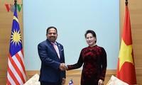 Chủ tịch Quốc hội Nguyễn Thị Kim Ngân tiếp đoàn đại biểu Nghị viện Indonesia, Malaysia