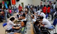 Gần 1.000 đơn vị máu thu được tại ngày đầu chính hội của Lễ hội Xuân Hồng