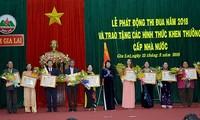 Phó chủ tịch nước Đặng Ngọc Thịnh dự lễ phát động thi đua yêu nước tại Gia Lai