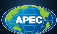 Năm APEC 2019 đề cao nền kinh tế số, kết nối và vai trò của phụ nữ trong phát triển kinh tế