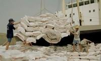 Ai Cập sẽ nhập khẩu 1 triệu tấn gạo của Việt Nam