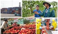 Việt Nam có nhiều điểm sáng trong tăng trưởng kinh tế
