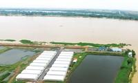 Thủ tướng Nguyễn Xuân Phúc thăm mô hình sản xuất cá tra giống công nghệ cao tại An Giang