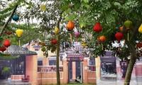 Tăng cường quảng bá du lịch hai thành phố Thanh Hóa và Hội An